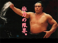 千代の富士.jpg
