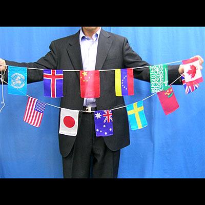国旗2.jpg
